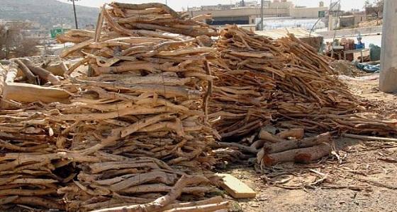 «الخضيري» يوضح حل مشكلة الاحتطاب الجائر.. والبيئة ترد