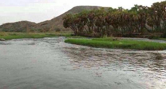 التحقيق في العثور على جثة مقيم داخل مستنقع مياه بالعاصمة المقدسة