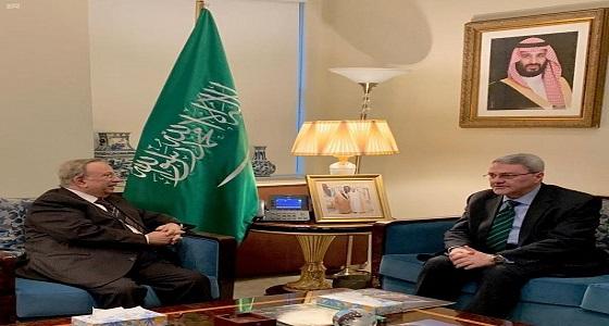 «المعلمي» يؤكد حرص المملكة على استقرار العراق ودعمها لسيادة أرضه