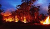 إطفاء حرائق أستراليا بالأمطار