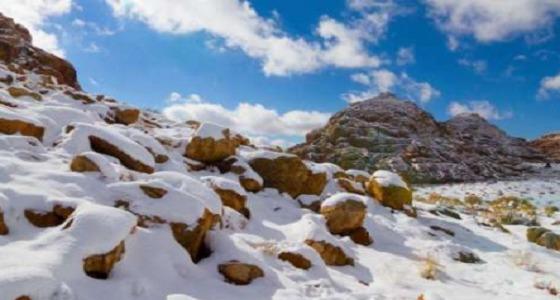 بالفيديو تساقط الثلوج على جبل اللوز في تبوك صحيفة صدى الالكترونية