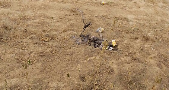 أخطر وكر لترويجالمخدرات والخمور في ضمد يديره مسلح أفريقي (فيديو وصور)