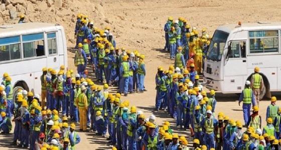 عمال كأس العالم ينتفضون في قطر بعد موت أكثر من 2000 غدرًا ( فيديو)