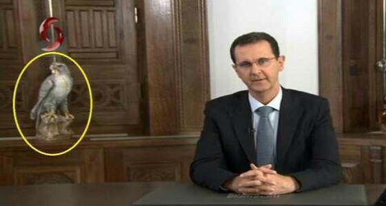 قصة الطائر الذي ظهر على يمين الأسد خلال خطابه المتلفز