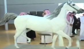 تدشين مجسمًا للفرس «صرفة» هدية المؤسس لجورج السادس