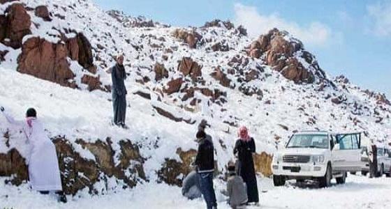بالفيديو.. تساقط ثلوج على جبل اللوز في تبوك