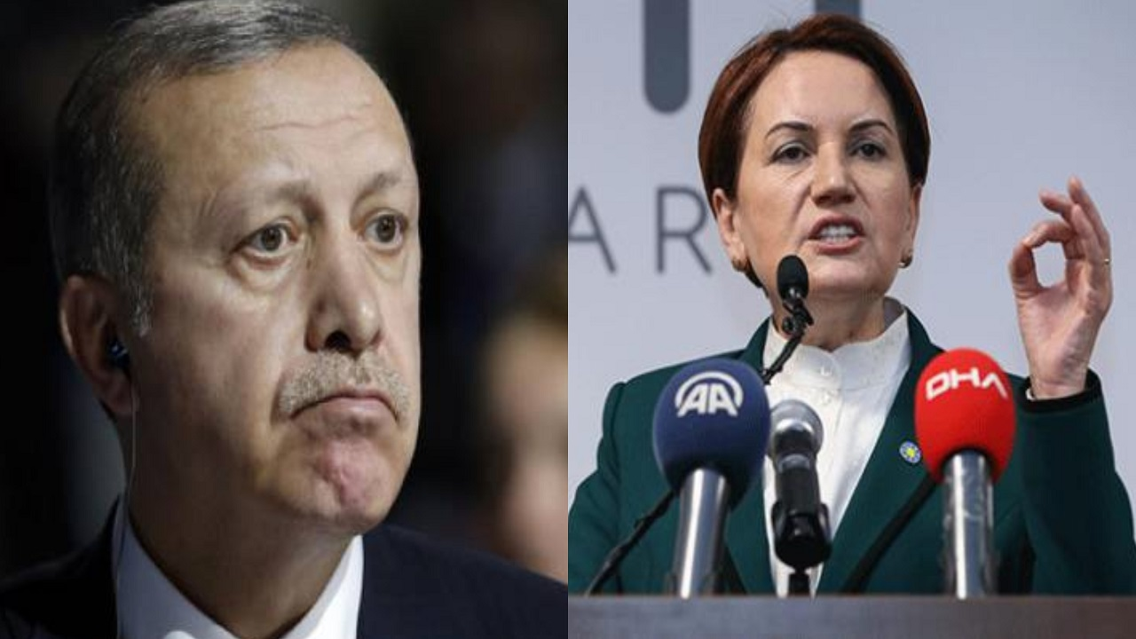 رئيسة حزب تركي تلقن أردوغان درسًا بعد فضيحة انتظاره أمام باب بوتين