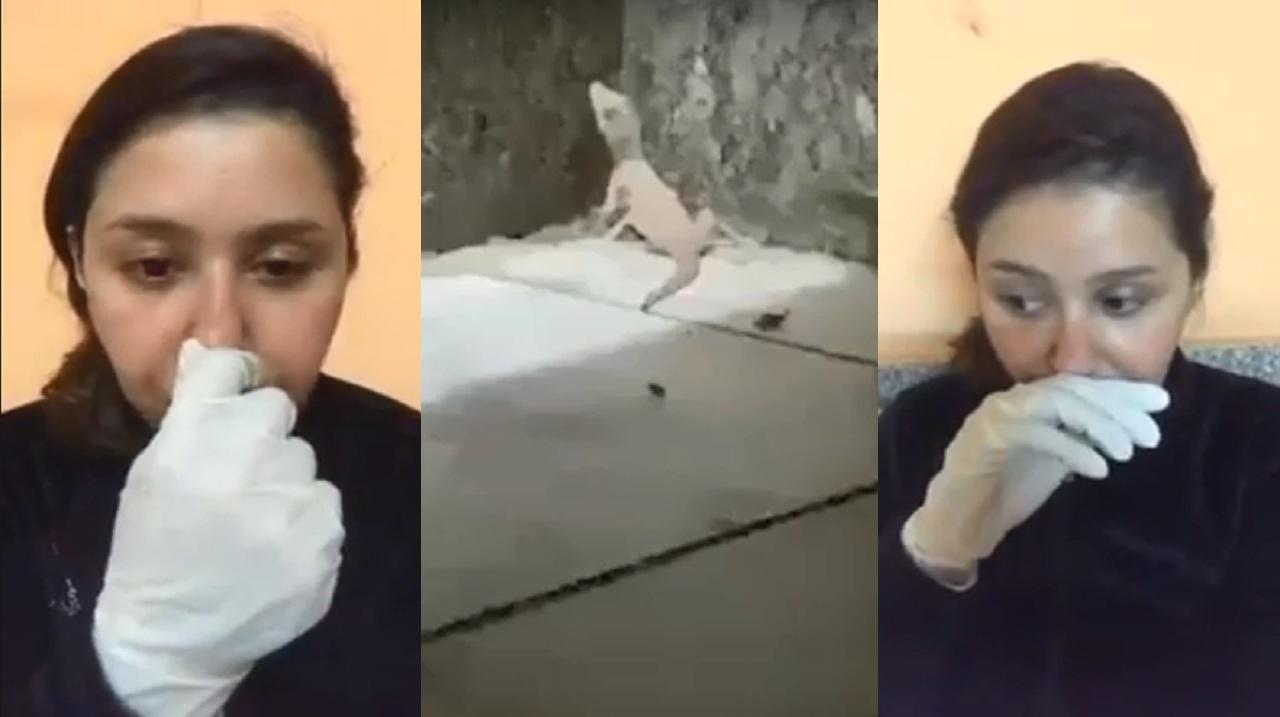 شاهد.. «برص» يهاجم فنانة مصابة في مستشفى العزل الصحي