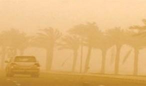 عاصفة ترابية تجتاح طريق «شجوى - العلا»