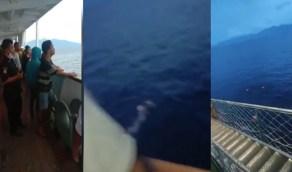 ركاب سفينة يلقون بأنفسهم في البحر خوفًا من انتقال العدوى إليهم (فيديو)