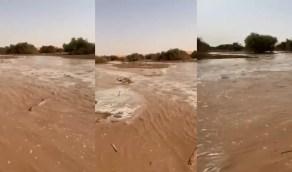 شاهد.. جريان السيول في روضة أم الذيابة بالمجمعة