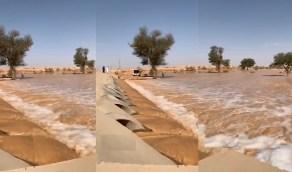 فيديو بديع لتدفق السيول الجارفة بحوطة بني تميم