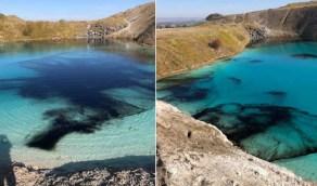 الفيروس يتسبب في تشويه لون بحيرة زرقاء ساحرة