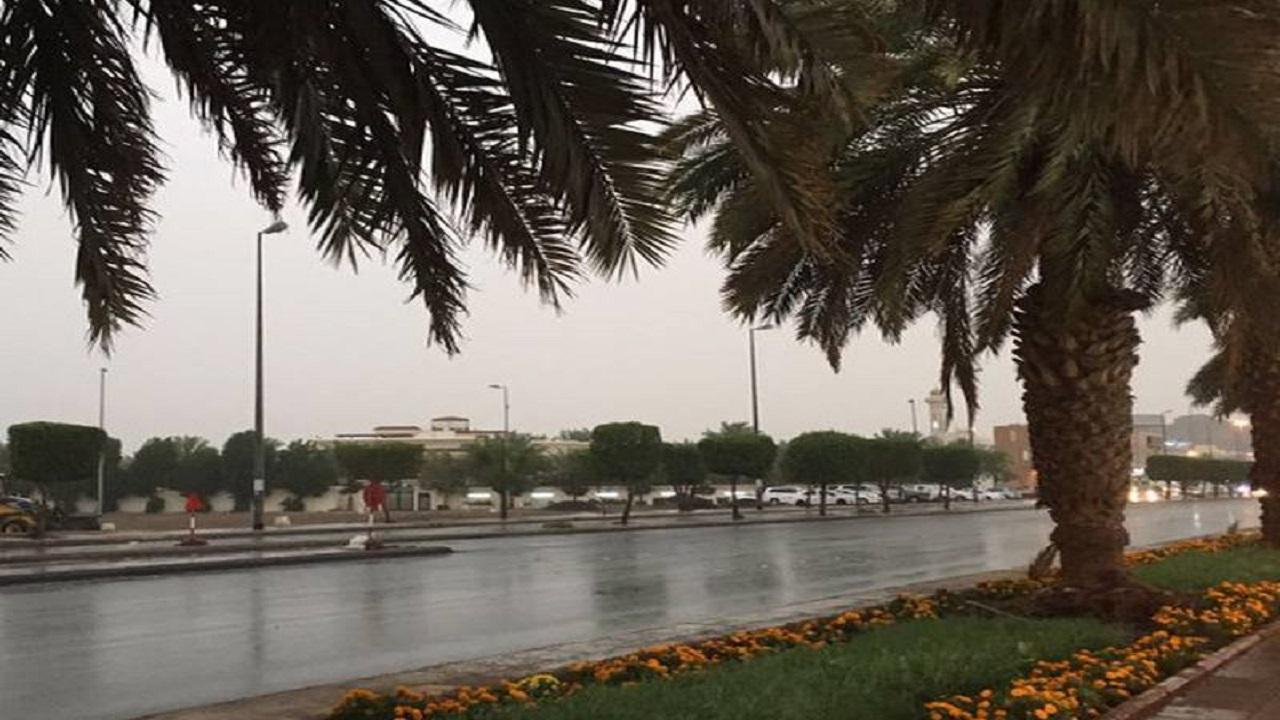 الأرصاد: أمطار رعدية على منطقة المدينة المنورة