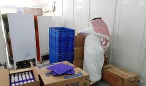 فرع وزارة البيئة بالشرقية يضبط كميات كبيرة من البيض المخزن بغرض الاحتكار