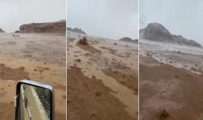 بالفيديو.. أمطار غزيرة على شمال انبوان بحائل
