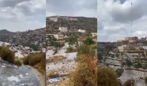 بالفيديو.. هطول الأمطار الغزيرة والبرد على الباحة
