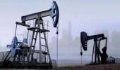 النفط يهبط جراء مخاوف حيال الطلب والتوترات