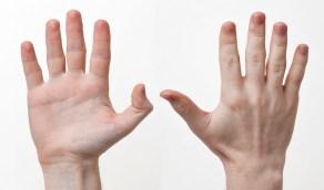 مفاجأة.. الرجال أصحاب الأصابع الطويلة أقل عرضة للإصابة بكورونا