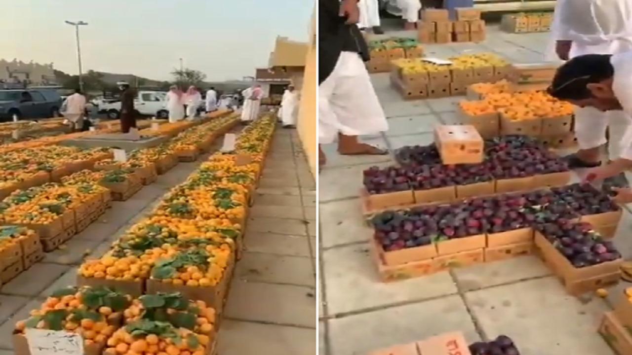 بالفيديو.. إقبال كبير على فواكه الطائف بعد بدء موسمها الجديد