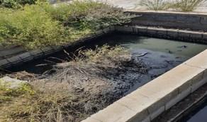 بالصور..تصريف مياه صرف صحي بأحد منتزهات الطائف