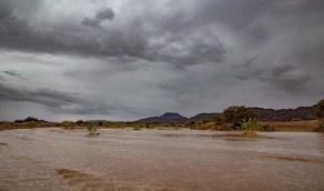 هطول أمطار رعدية على 8 مناطق بالمملكة غدًا الأحد