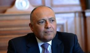 مصر تتهم تركيا رسميًا بتجنيد وتدريب المرتزقة وإرسالهم إلى ليبيا