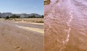 بالفيديو.. سيول عارمة بنجران إثر هجول الأمطار