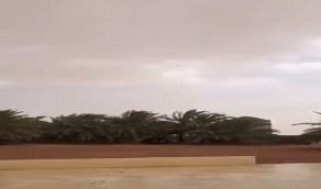 بالفيديو.. أمطار على القاعد بشمال حائل