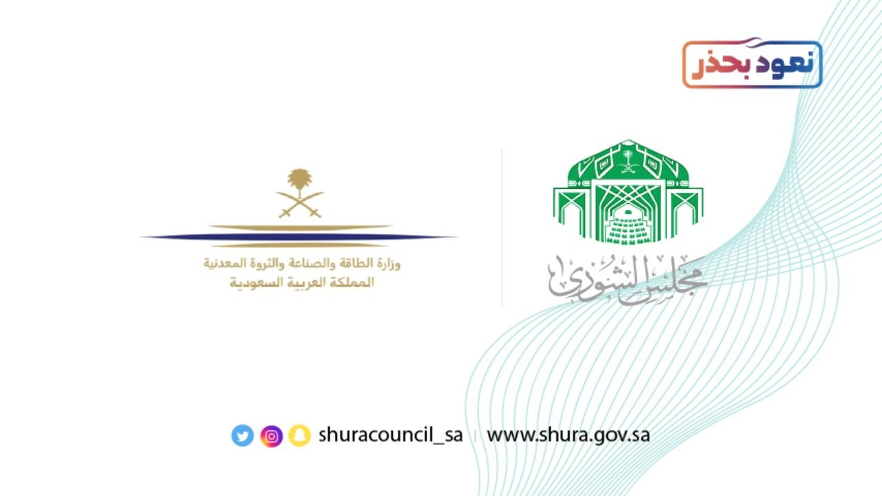 «الشورى» يطالب وزارة الطاقة بتطوير الصناعات الدوائية والأجهزة الطبية