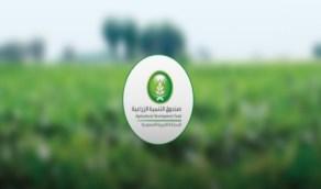 التنمية الزراعية: تمويل 33 مشروعًا زراعيًا وتأجيل أقساط 4398 مستفيداً لتخفيف تداعيات الجائحة