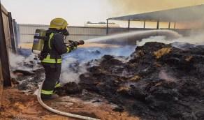 بالصور.. اندلاع حريق في مستودع أعلاف