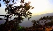 شاهد.. «الزعاق»: اليوم أول أيام مربعانية القيظ