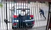 بالفيديو.. ردة فعل مفاجئ لامرأة تعرّضت لمحاولة اغتيال