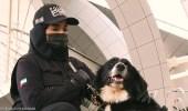 بالصور.. الإمارات تبدأ استخدام الكلاب البوليسية للحد من انتشار كورونا
