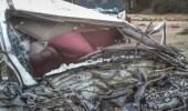 3 حالات وفاة وإصابتين خطيرتين في حادث مروع على طريق «مكة - الليث»