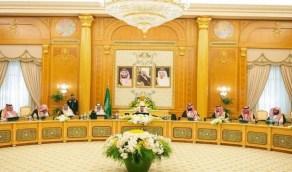 مجلس الوزراء يوافق على نظام البيئة الجديد