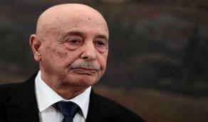 ليبيا تدعو الجيش المصري للتدخل لدحر المحتل التركي