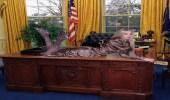 باريس هيلتون تُعلن نيتها الترشح للرئاسة الأمريكية