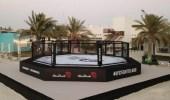 تعرف على «جزيرة القتال» في الإمارات التي ستستضيف فعاليات الفنون القتالية المختلطة