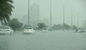 """""""المسند"""": أمطار ورياح نشطة على عسير وجازان اليوم"""