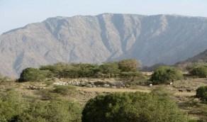 مدني ميسان ينقذ مواطنًا خمسينيًا سقط بمنحدر جبلي