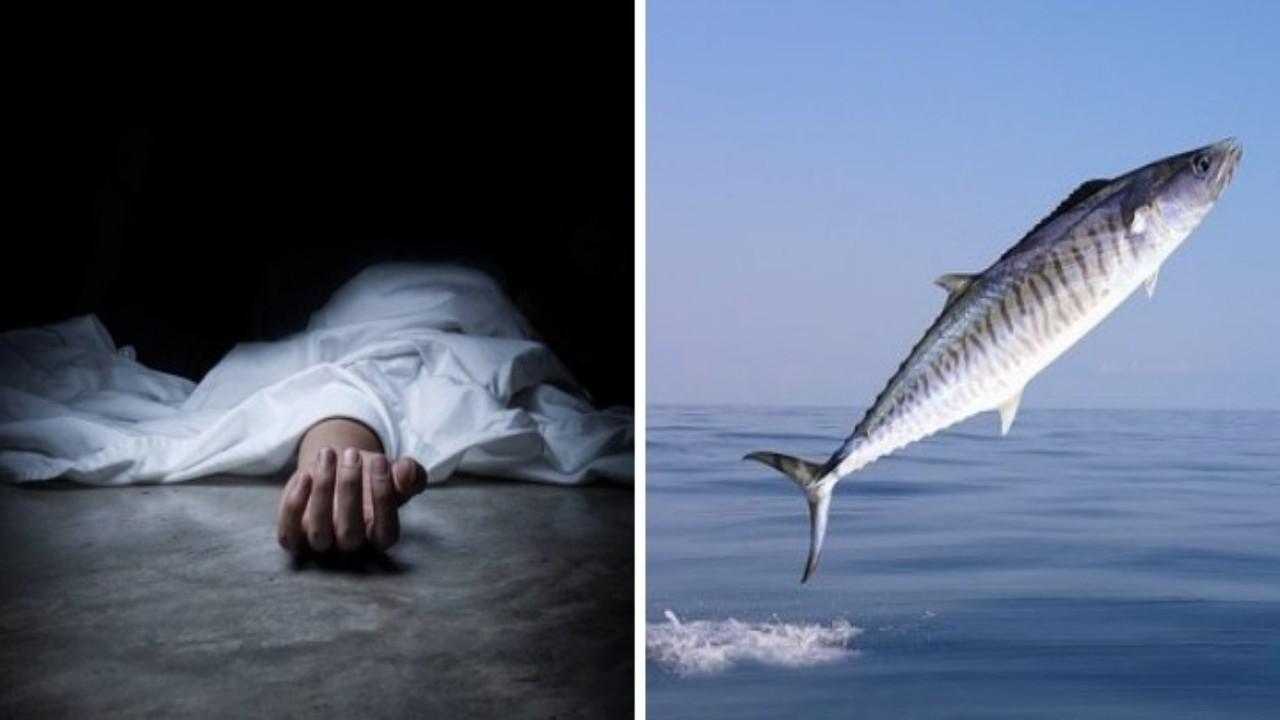 سمكة ضخمة تقتل صيادًا في واقعة غريبة