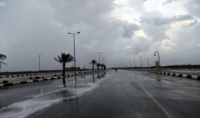 استمرار هطول أمطار رعدية على 3 مناطق