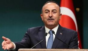 نظام أردوغان يستغل فاجعة بيروت بتوزيع الجنسية التركية على اللبنانيين