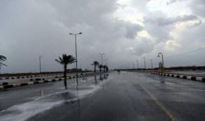 هطول أمطار رعدية ورياح نشطة على عدة مناطق غدًا