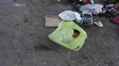 أب يلقي طفلته الرضيعة في القمامة بعد ولادتها مباشرة