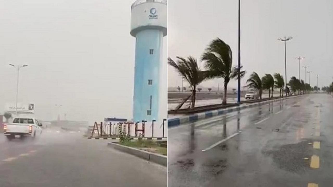 بالفيديو .. أمطار غزيرة ورياح تجتاح الليث