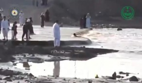 بالفيديو.. لحظة سقوط طفل من والده في أحد الأودية