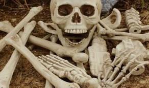العثور على عظام بشرية في أمتعة سيدة مسنة